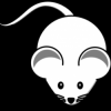 Mousey7065